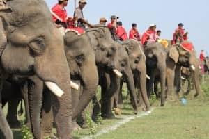 THE ELEPHANT RACING FESTIVAL IN DAKLAK